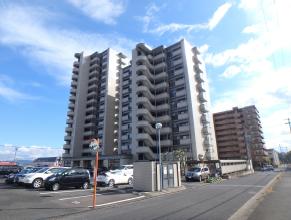 明野の新築建売 4LDK+S(2080)の外観画像 ジェットの建売が有名ですが坂井建設の建売物件もぜひ見てください!